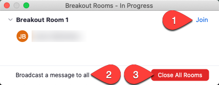 "Select ""join"" button to join individual rooms, options to broadcast message and close all rooms are available."
