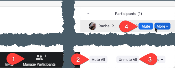 Screenshot of participants in a Zoom meeting with the steps called out for how to Mute and Unmute participants