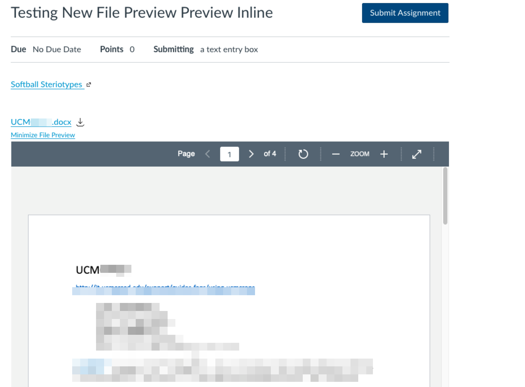 Student view of File when using Preview Inline - File opens embeded in the page